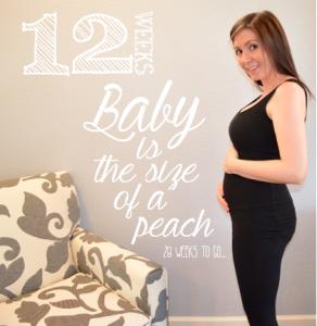 12 week baby bump progress
