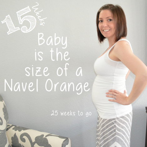 Baby Bump week to week: 15 Weeks
