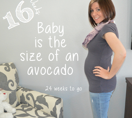 Baby bump week to week: 16 Weeks