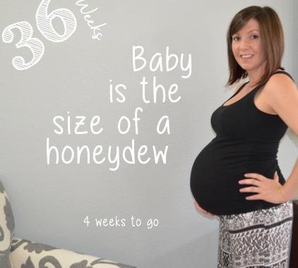 36 week baby bump