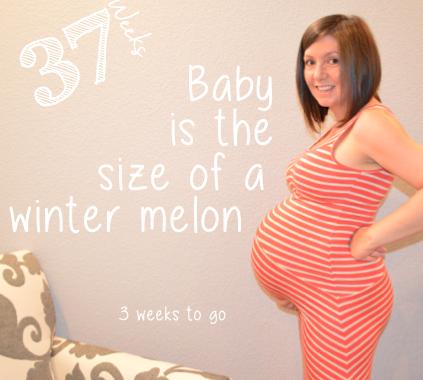 37 week baby bump