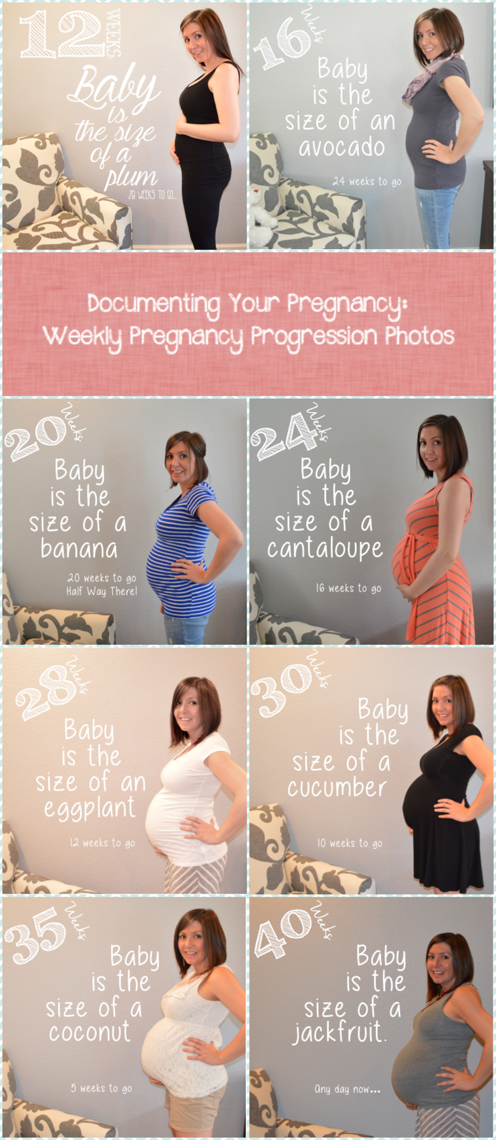 pregnancy progression photos