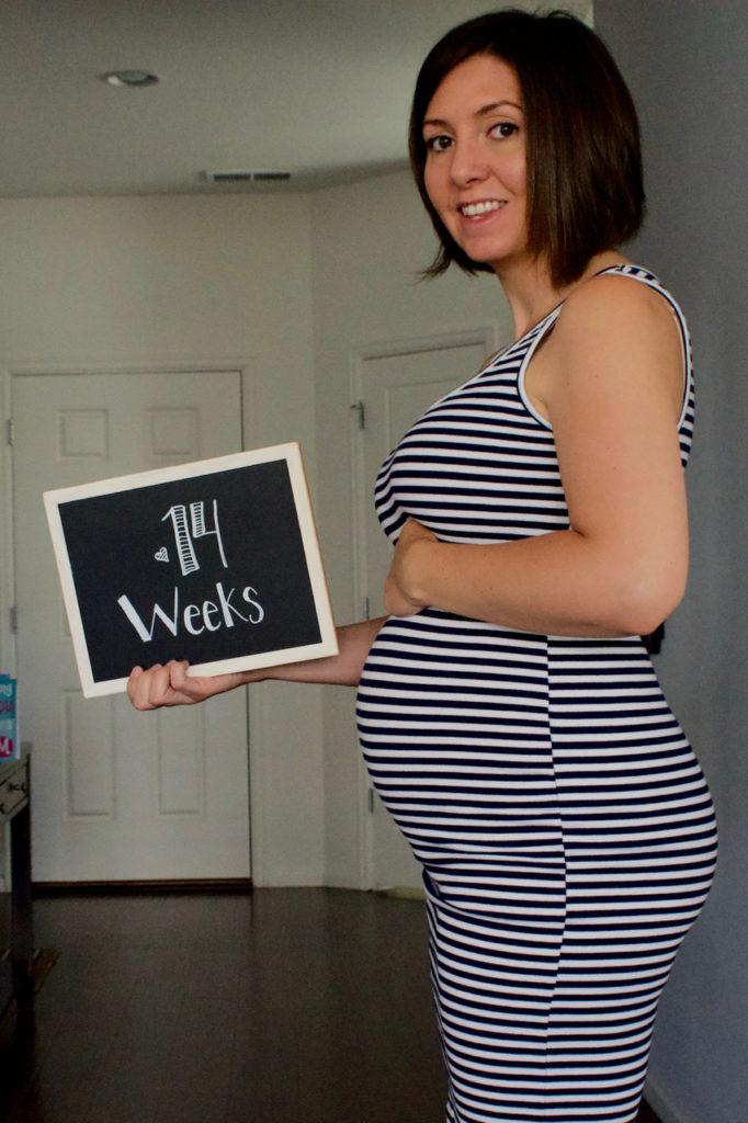 My Pregnancy At 14 Weeks…